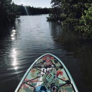 Paddle Boarding | Amy's Blinds on Marco Island, Florida