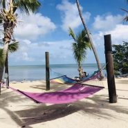 Hammocks | Amy's Blinds on Marco Island, Florida