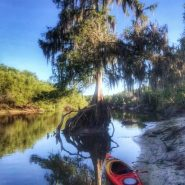 Canoes | Amy's Blinds on Marco Island, Florida