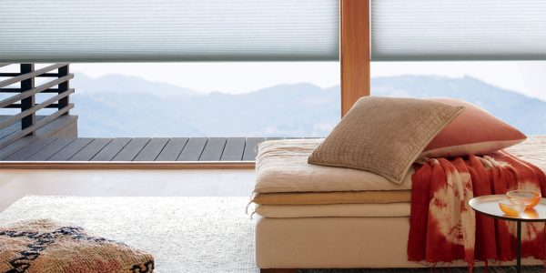 amys-blinds-on-marco-island-florida-energy-efficient-windows-honeycomb-blinds-over-mountains